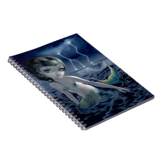 """Storm Chaser"" Notebook"