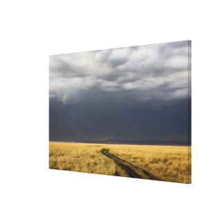 Storm clouds and road across gassy plains of the canvas print
