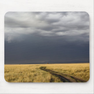 Storm clouds and road across gassy plains of the mouse pad