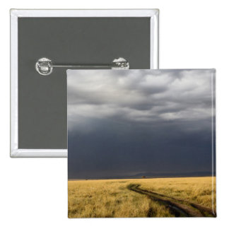 Storm clouds and road across gassy plains of the pinback button