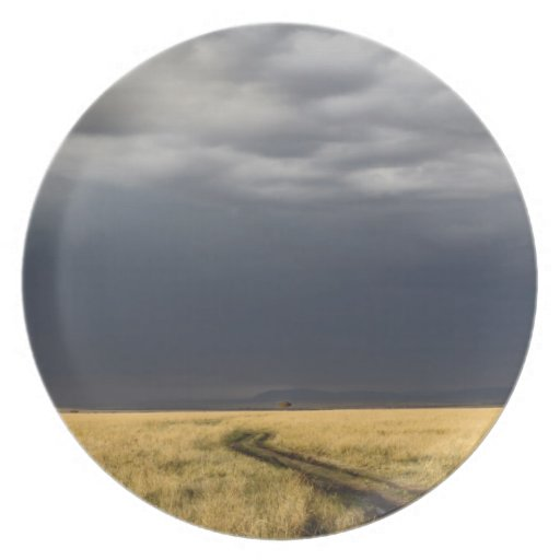 Storm clouds and road across gassy plains of the plate