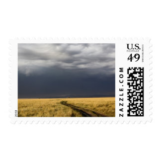 Storm clouds and road across gassy plains of the postage stamp