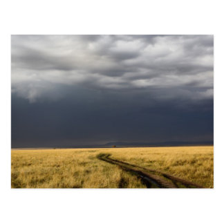 Storm clouds and road across gassy plains of the postcard