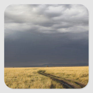 Storm clouds and road across gassy plains of the square sticker