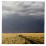 Storm clouds and road across gassy plains of the tile