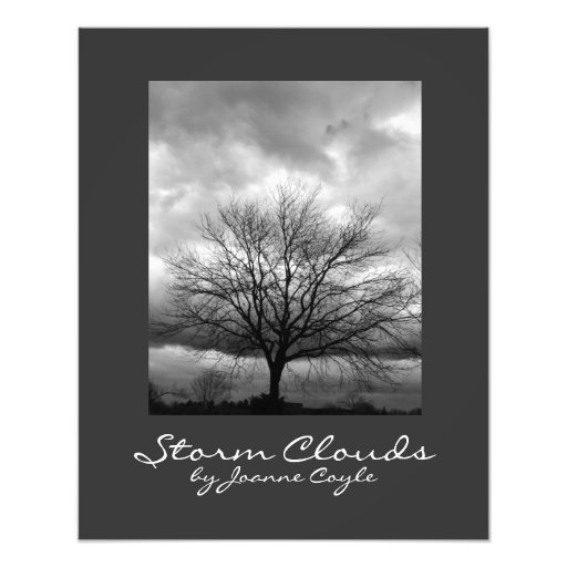 Storm Clouds by Joanne Coyle - Print Photo Art