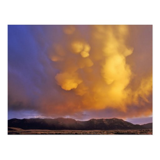 Storm Clouds in the Centennial Range in Montana Post Card