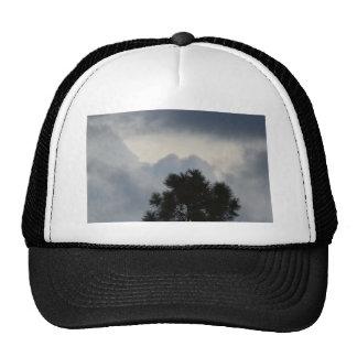 Storm Clouds through Pine Tree Trucker Hat
