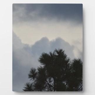 Storm Clouds through Pine Tree Plaque