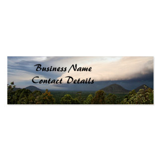 Storm Front Mini Business Card