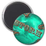 STORM-Magnet