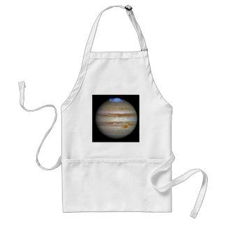 Storm on Jupiter Adult Apron