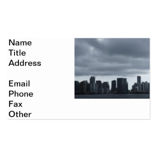 Storm over Miami Business Cards