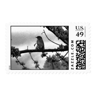 Storm Song Postage
