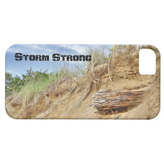 Storm Strong iPhone 5 Covers