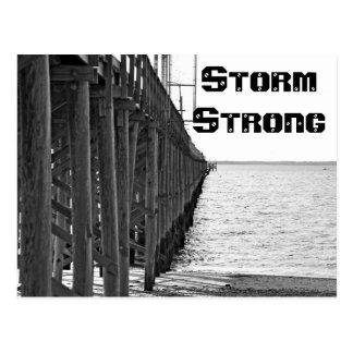 Storm Strong Postcard