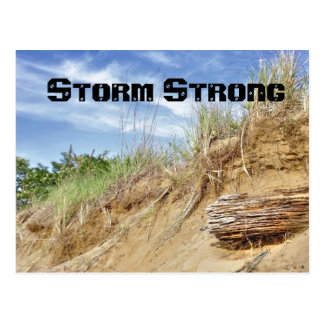 Storm Strong Postcard