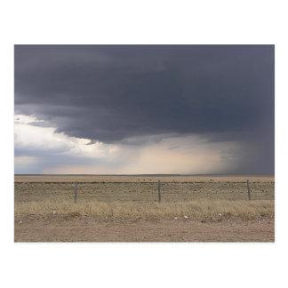 Storm Wedge Postcard