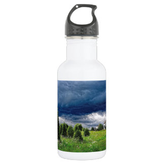 Storm's A Gatherin' Stainless Steel Water Bottle