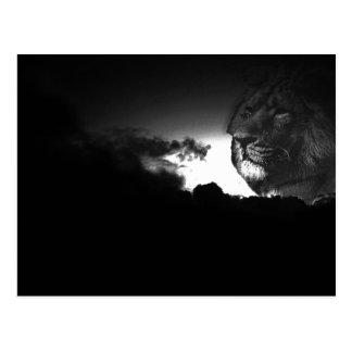 storms roar postcard