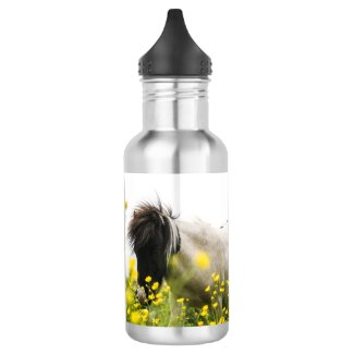 Storms Waterbottle 18oz Water Bottle