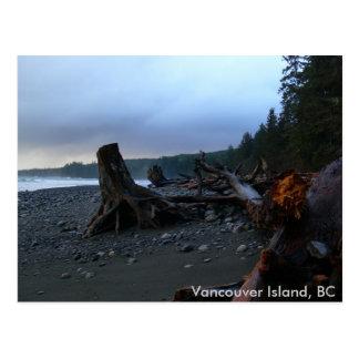 Stormy Beach Postcard