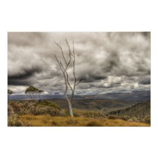 Stormy Day on Cradle Mountain poster