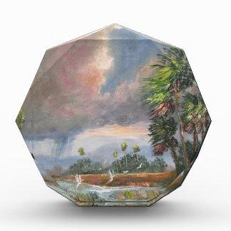 Stormy Florida Backwoods Acrylic Award