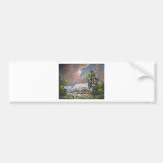 Stormy Florida Backwoods Bumper Sticker