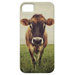 Stormy iPhone 5 Covers