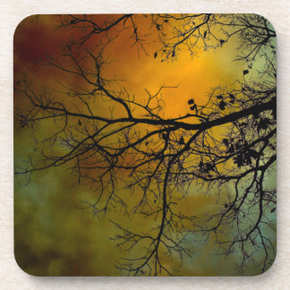 Stormy morning with tree coaster set