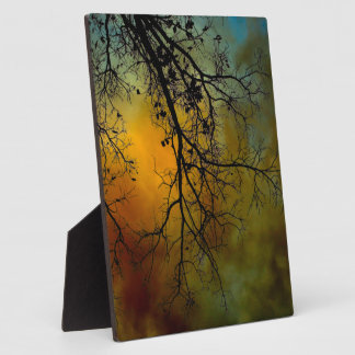Stormy morning with tree photo plaque