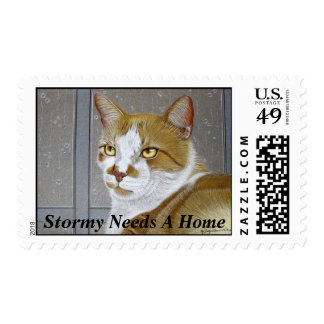 """""""Stormy Needs A Home"""" postage stamp"""