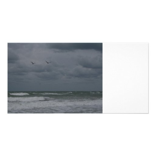 Stormy ocean with birds flying photo greeting card