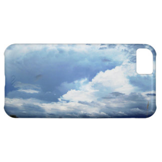 Stormy Skies iPhone 5C Cover
