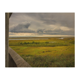 Stormy Sky Over Marsh and Bay Wood Art Wood Wall Art