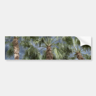 Stormy Sky Palm Trees Bumper Stickers