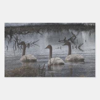 Stormy Swans Rectangular Sticker