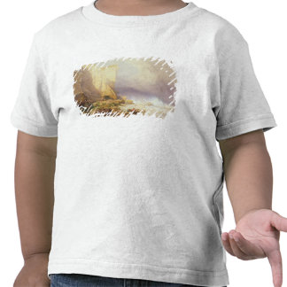 Stormy Weather Clearing Seaton Cliffs Shirts