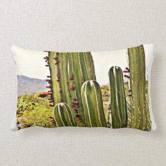 Stove Pipe Cactus Cotton Throw Pillow