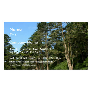 Stow Lake In San Franciscos Golden Gate Park Business Card