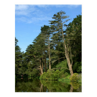 Stow Lake In San Franciscos Golden Gate Park Post Card