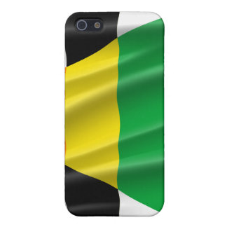 STRAIGHT ALLY FLAG iPhone 5 CASE