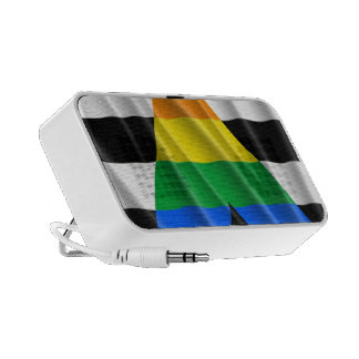 STRAIGHT ALLY FLAG iPod SPEAKERS
