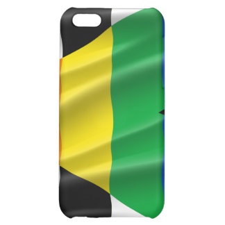 STRAIGHT ALLY FLAG WAVY DESIGN iPhone 5C CASES
