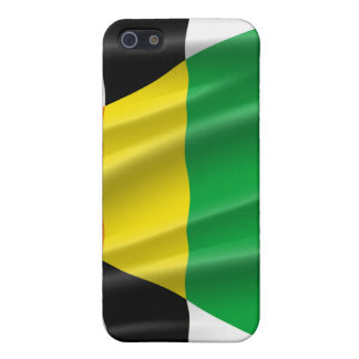STRAIGHT ALLY FLAG WAVY DESIGN CASES FOR iPhone 5