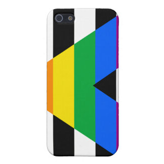 Straight Ally Pride iPhone 5 Cases