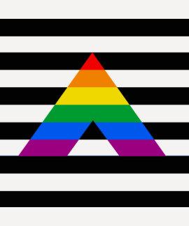 Straight Ally Pride Tshirt