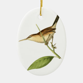 Straight-billed Wren Bird Illustration by William Double-Sided Oval Ceramic Christmas Ornament