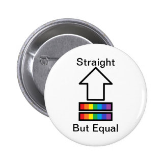 Straight But Equal LGBT support pin
